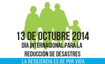 IDDR2013
